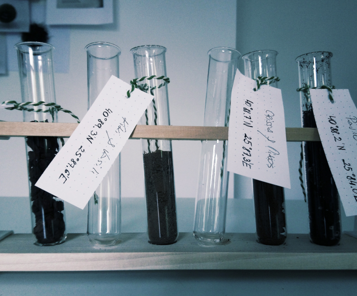 Test tubes containing soil samples